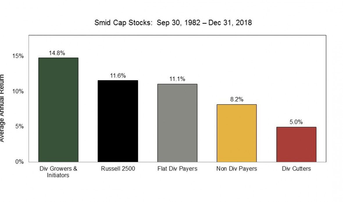 Smid Cap Bar Graph